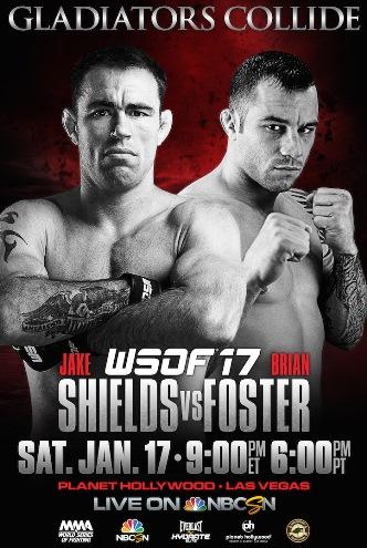 Постер WSOF 17