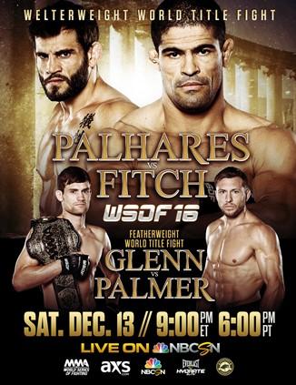 Постер WSOF 16 — Palhares vs. Fitch